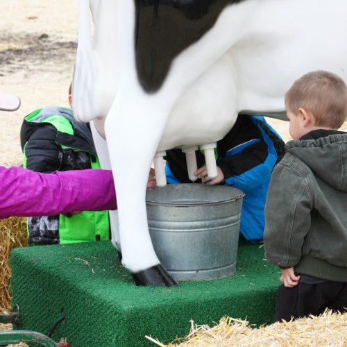 Milk a Fake Cow